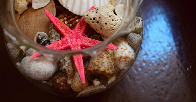 a jar with seashells and starfish