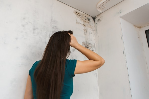 how to stop condensation on walls-min