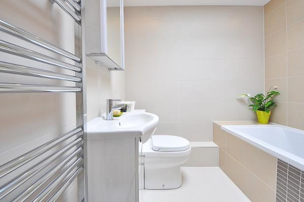 toilet limescale