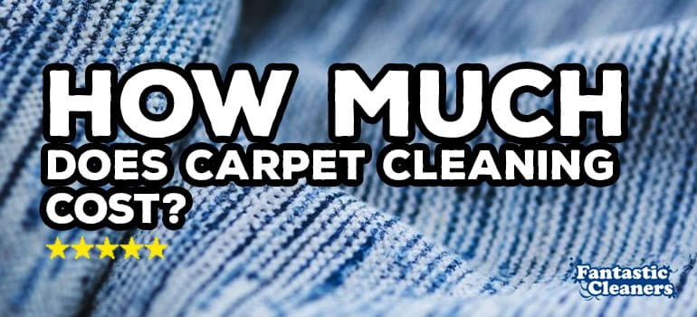 HELP How Much Does Professional Carpet Cleaning Cost On